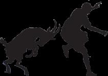 goat-chasing-man